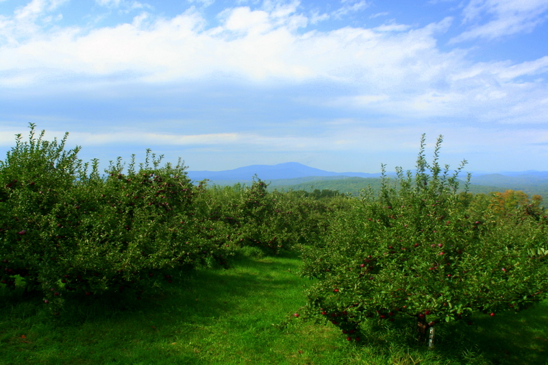 Gould's Orchard in Contoocook... beautiful views...