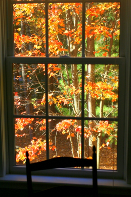 The view from my guest bedroom... the reds are outstanding this year...