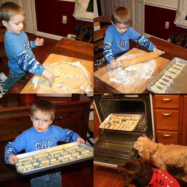 Tommy helping make dog bones... with the dogs overseeing...