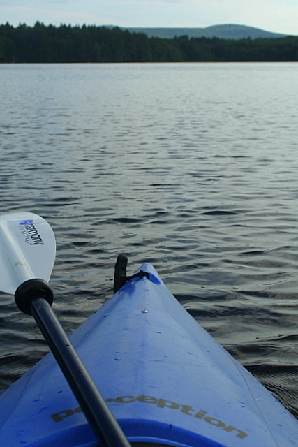 Finally took the kayak out for a ride yesterday... beautiful afternoon on Scobie Pond.