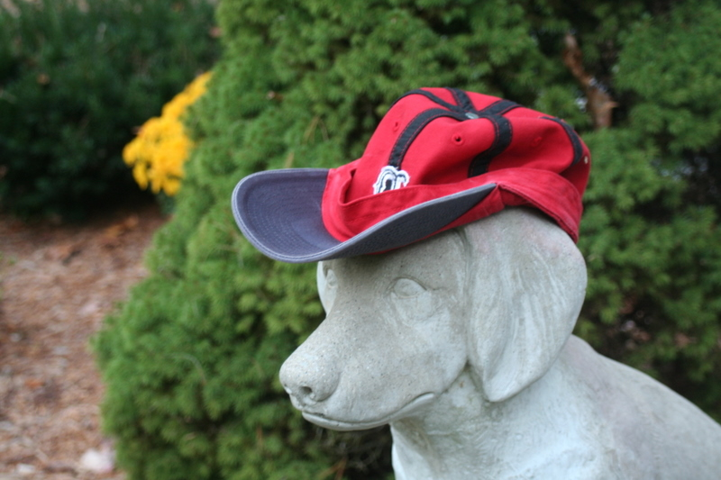 Even my stone dog has his rally cap on...  Let's get it together Sox - it's do or die!