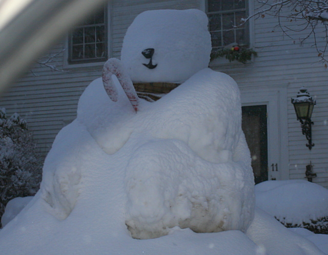 People are being pretty creative with all the snow we've been getting... and this guy just got a fresh coat