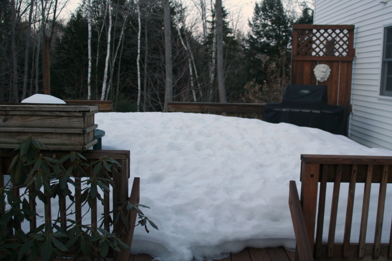 Guess I won't be putting out the deck furniture in honor of Spring's arrival this week...