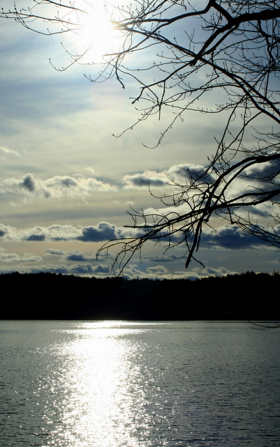 Sun on Walden Pond...