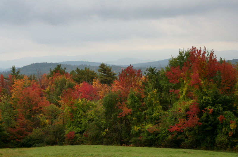 View of the turning foliage in New London, NH