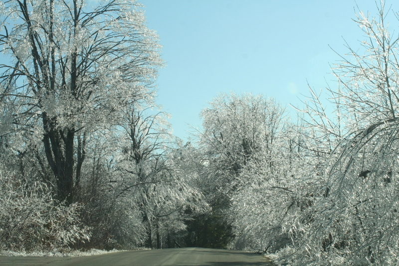 Ice storm...  pretty but I want my power back