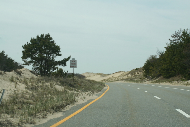 The dunes of the Cape...