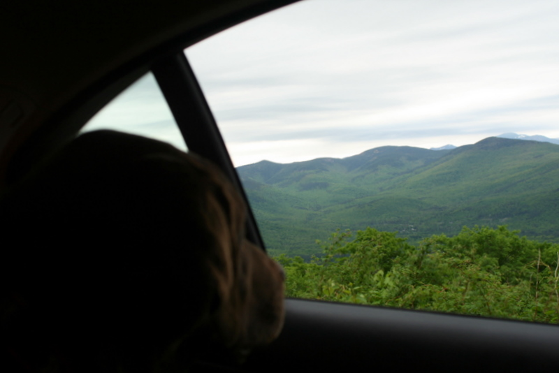 Sophie loving the White Mountains ride...