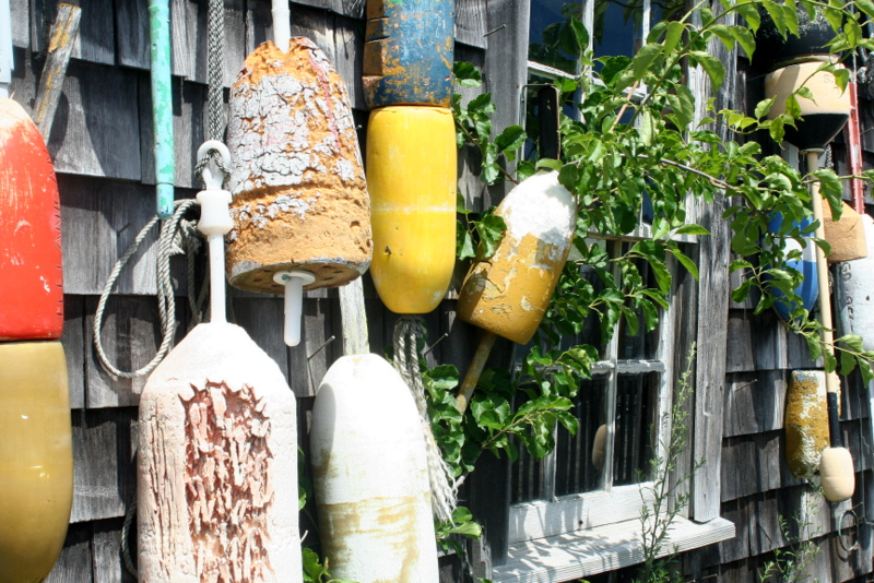 Old buoys and weeds...