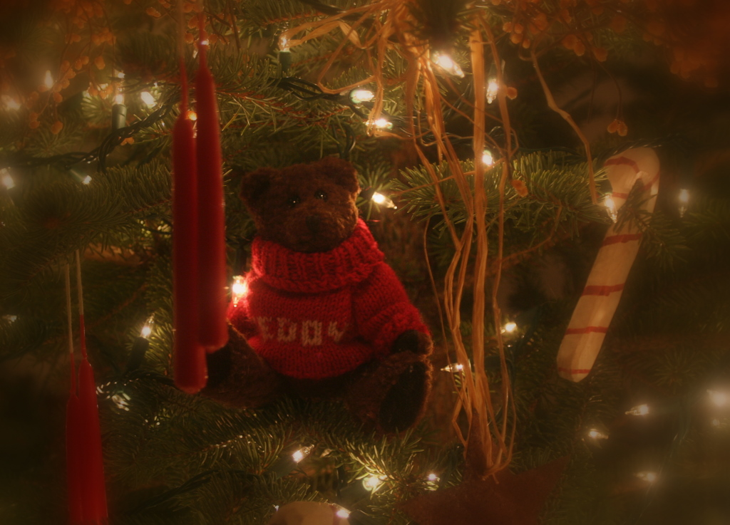 Christmas tree bear