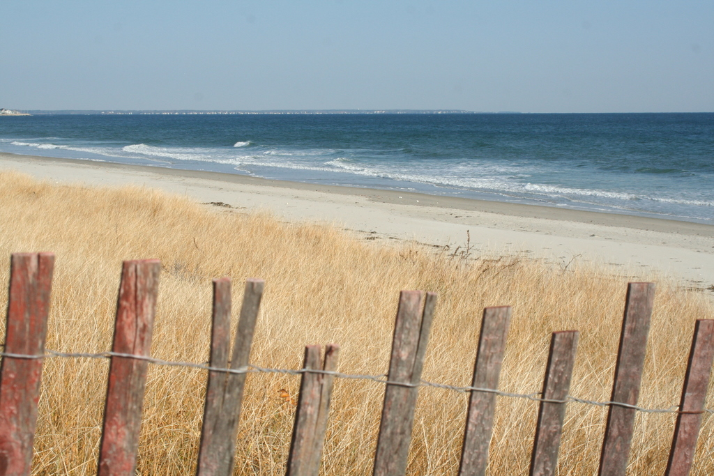 Sand fence and the beach