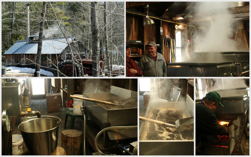 Maple Syrup time...