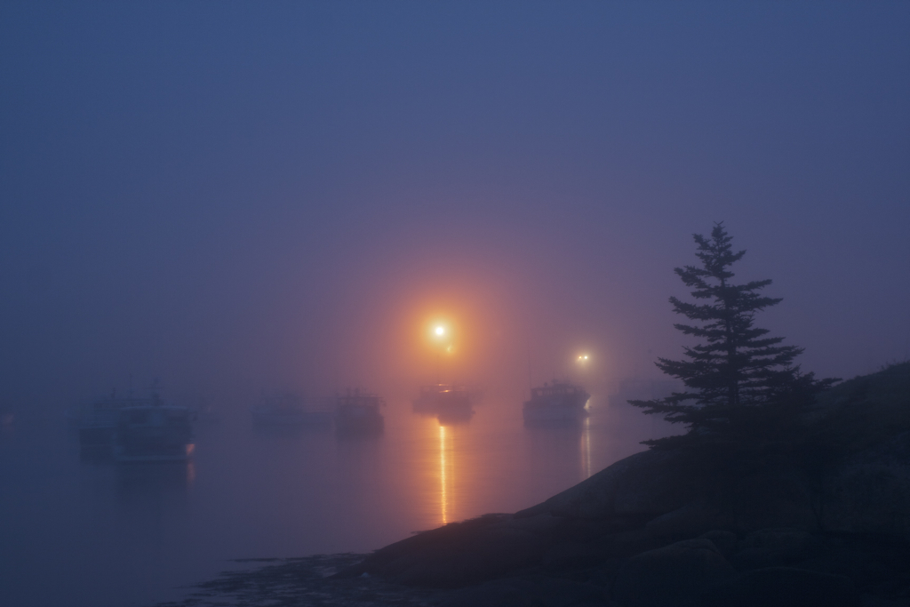 Corea Harbor, Maine at dusk on a foggy day
