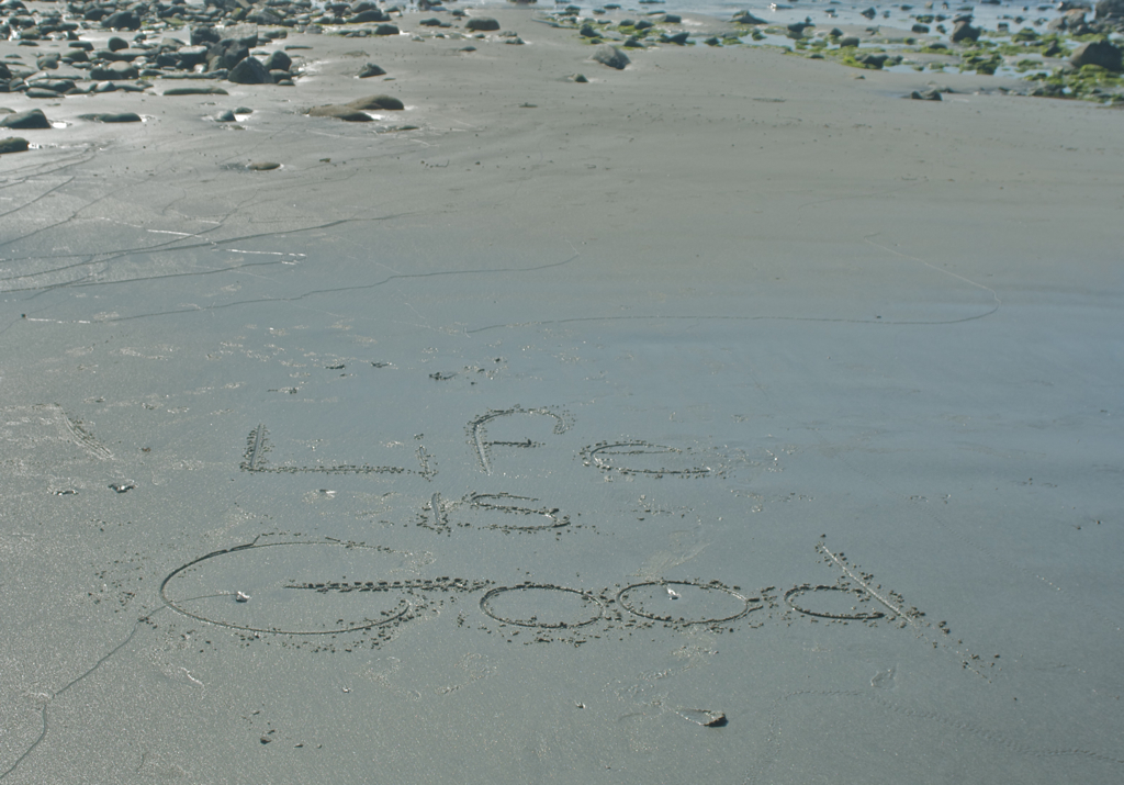 Came across this walking the beach yesterday morning :)