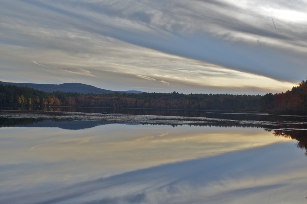 Scobie Pond taking on the reflection of the sky late this afternoon..