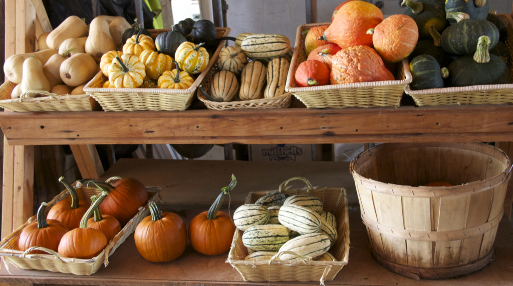 Different farmstand....  and more hints of Fall....  August 12th.