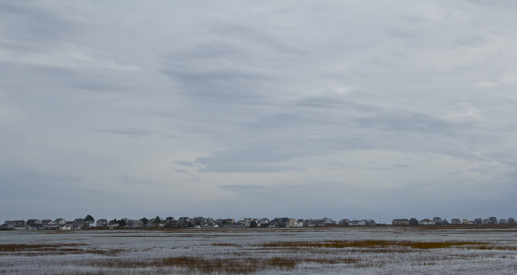 Marsh at high tide