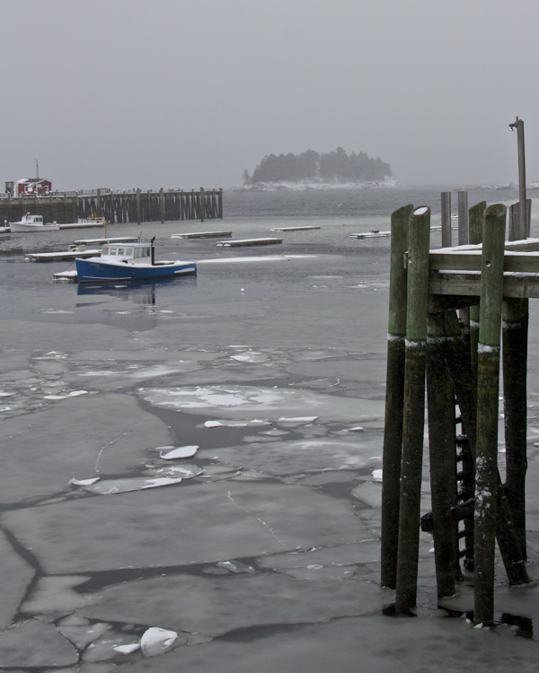 Winter in the harbor
