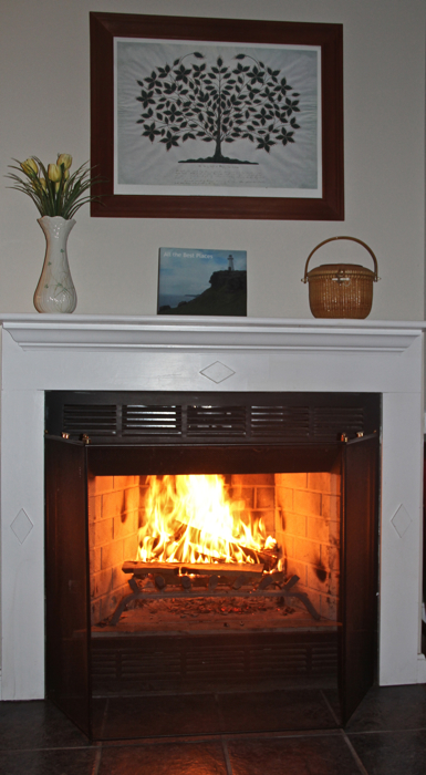The calendar says spring but the temperature says it's still time to make use of the fireplace...