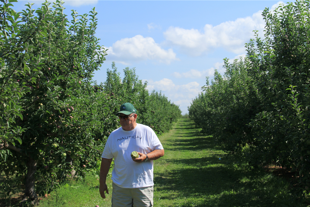 Dad enjoying a nice crisp macintosh apple at Carter's Orchard today; something he sorely misses living in SC...