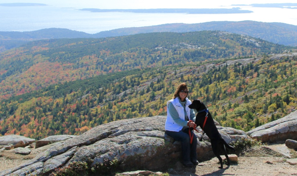 Enjoying Cadillac Mountain with Lucy...